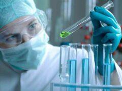 Учеными разрабатывается новейшее средство для лечения заболеваний печени