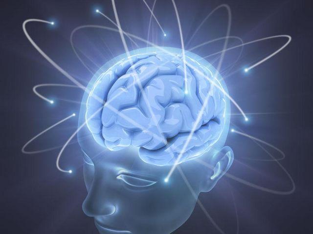 Учёные определили, из-за чего отличается уровень интеллекта людей