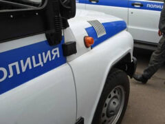 Житель Красноярска похоронил собаку на газоне рядом с жилым домом