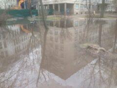 Территорию Мариинской больницы в Петербурге затопило водой