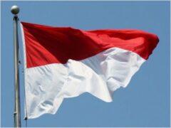 СМИ: российский турист задержан в Индонезии за попытку украсть флаг