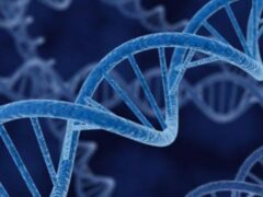 Генетики: части древних вирусов в ДНК помогают бороться с инфекциями