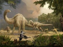 Учёные подсчитали: На земле было 1936 видов динозавров