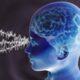 Ученые: Визуальный поиск снижает тактильную чувствительность человека