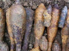 В Истринском районе Подмосковья в лесу обнаружено 55 мин
