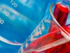 Ученые нашли у людей ген, отвечающий за регенерацию конечностей