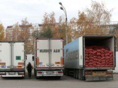Задержан угонщик грузовика с фруктами на 4 млн рублей в Подмосковье