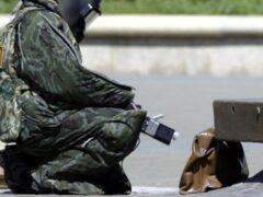 Воронежскую администрацию оцепили из-за «бомбы»