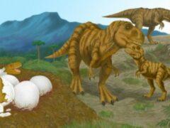 Миллионы лет назад детеныши динозавров вырастали за считанные недели
