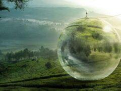 Ученый заявил, что окружающий мир является жестокой иллюзией