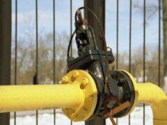 Мужчина пытался отравить семью газом в Ленобласти