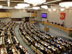 От Приморья в Госдуму намеревается добыть мандат сестра «Винни-Пуха»