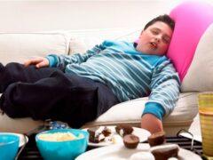 Ученые: Причиной ожирения являются низкий доход и плохое образование