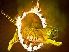 В Иране запретили использовать диких животных в цирках