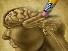 Ученые выяснили, как стереть из памяти неприятные воспоминания