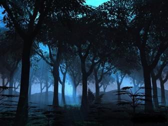 деревья ночью