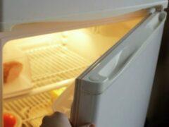 В общежитии Тамбова в морозилке холодильника обнаружили тело младенца