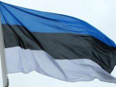 Изъятый на границе Эстонии и России меч викингов передали Украине