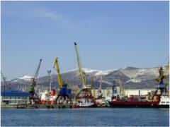 Посреднические схемы транспортировки нефти игнорируются президентом «Транснефти» Николаем Токаревым