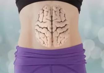 желудок - второй мозг