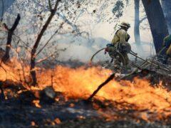 Лесной пожар угрожает городу в Канаде, власти просят помощи у военных