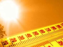 Ученые: нынешнее лето станет самым жарким в истории