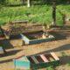 На детской площадке в Перми голый мужчина устроил дебош