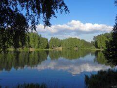 В Башкирии в реке обнаружен труп мужчины