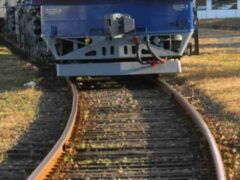 Пьяный житель Волгоградской области остановил поезд макетом ружья