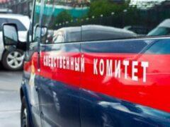 Причиной гибели отчима и падчерицы в Липецке могло стать отравление угарным газом