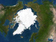 Ученые считают, что Северный полюс может исчезнуть в течение года