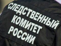 В Омской области найден труп мужчины, захлебнувшегося грязью