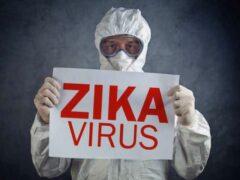 IBM предоставит свои технологии для борьбы с вирусом Зика