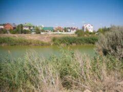 В пруду Волгограда нашли тело мужчины с гирей на шее