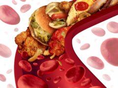 Ученые: Стремительное снижение уровня холестерина приводит к спаду уровня интеллекта