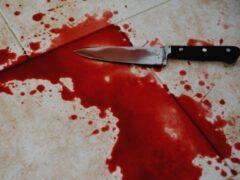 В Челябинске в квартире нашли изрезанные тела двух мужчин