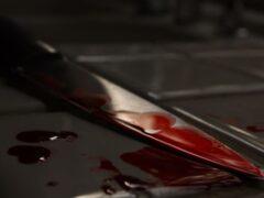 В Ховрино женщина зарезала племянника и написала явку с повинной