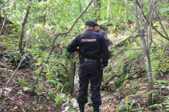 лес полиция