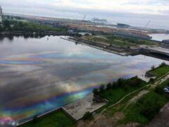 Петербург: В реку Смоленку попала нефть