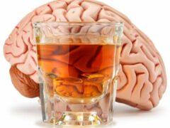 Ученые: Пристрастие к алкоголю регулирует фермент PRDM2, вырабатываемый в мозге человека