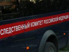 Петербург: На улице Доблести двое избили и изнасиловали девушку