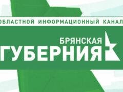 Трех работников муниципального телеканала «Брянская губерния» попросили уйти после участия в программе кандидата от ЛДПР