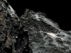 На комете Чурюмова-Герасименко обнаружены «морские обитатели» возрастом в миллиарды лет