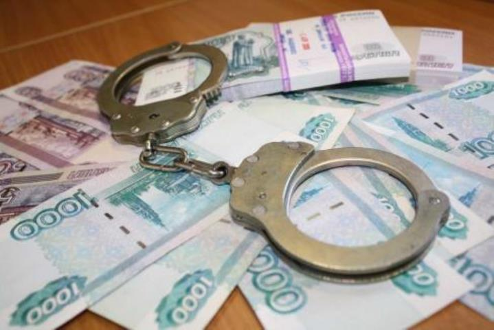 Защитники вВолгограде «заработали» наподзащитной 550 тыс. руб.