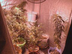 В квартире кемеровчанки полицейские обнаружили вход в «тайную комнату»