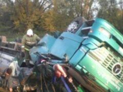 Под Орлом фура вылетела с дороги, водитель погиб