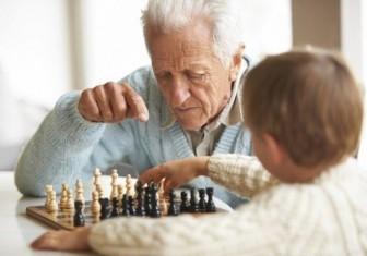 шахматы дед внук