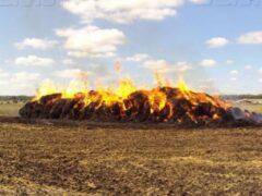 Воронежская пенсионерка из мести сожгла запасы сена соседа