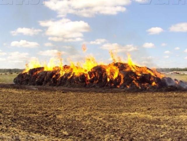 Недовольная соискательница сожгла имущество работодателя вВоронежской области