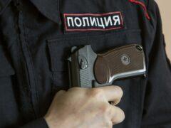 Полицейские применили оружие, чтобы остановить пьяного водителя